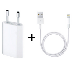 Комплект Зарядное устройство Apple (MD813) + Кабель Apple Lightning to USB (MD818), цена | Фото